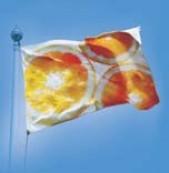 tkanina flagowa z podkładem